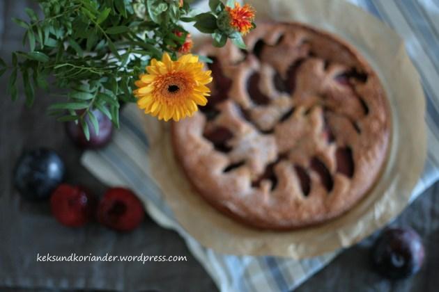 pflaumenkuchen-zimt-herbst-rc3bchrteig-21
