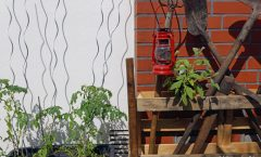 mimis foodblog. Black Bedroom Furniture Sets. Home Design Ideas