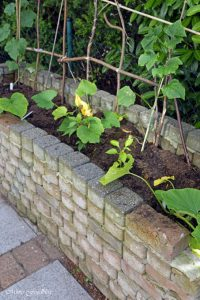 pflanzen ernten naschen Urban Gardening denn Sommerzeit ist Balkonzeit meinkleinergarten 20