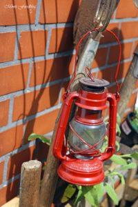 pflanzen ernten naschen Urban Gardening denn Sommerzeit ist Balkonzeit meinkleinergarten 22