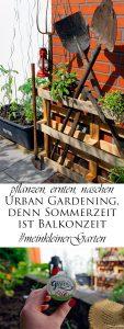 pflanzen ernten naschen Urban Gardening denn Sommerzeit ist Balkonzeit meinkleinergarten 23