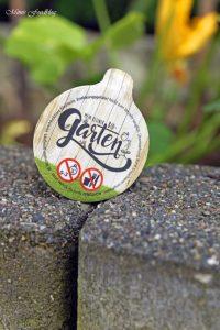 pflanzen ernten naschen Urban Gardening denn Sommerzeit ist Balkonzeit meinkleinergarten 5