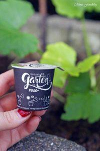 pflanzen ernten naschen Urban Gardening denn Sommerzeit ist Balkonzeit meinkleinergarten 6