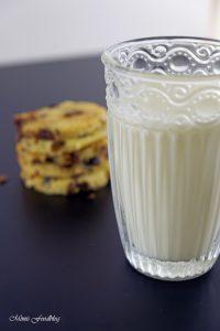 Cranberry Schoko Cookies mit Limette ein Ausflug in die amerikanische Patisserie 7