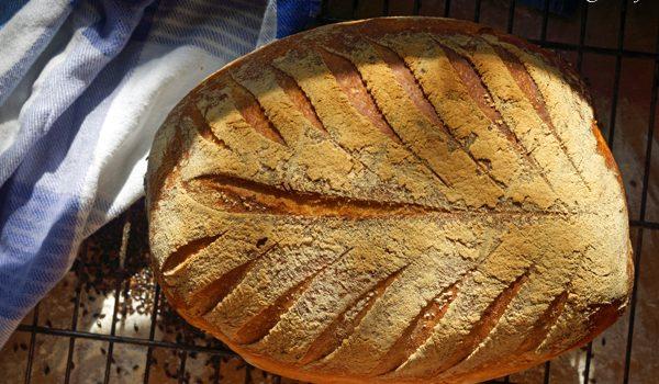 Genetztes Weissbrot wie backe ich einen Brotklassiker 4