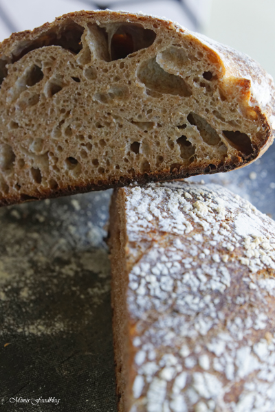 Franzoesisches Roggenmischbrot gebacken im gusseisernen Braeter 2